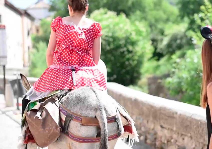 Burro Taxi para despedidas en Granada